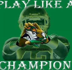 """P.L.A.C. Like the Irish? Be sure to check out and """"LIKE"""" my Facebook Page https://www.facebook.com/HereComestheIrish Please be sure to upload and share any personal pictures of your Notre Dame experience with your fellow Irish fans!"""
