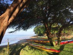 Kaanapali Beach - The Hyatt Residence Club Maui ~ Oceanfront Luxury AdventuresofEmptyNesters.com