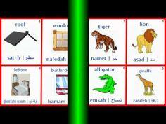 150 كلمة عربية مهمة صوت وصورة 150 Learn Arabic 150 important words audio...