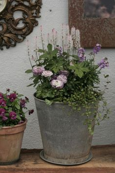 Pergola For Small Backyard Diy Gardening, Container Gardening, Succulent Containers, Container Flowers, Container Plants, Vegetable Gardening, Design Thinking, Wood Plastic, Layout Design