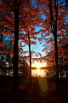 Fall Sunset, Vermont
