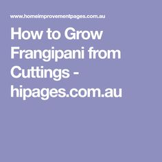 How to Grow Frangipani from Cuttings - hipages.com.au