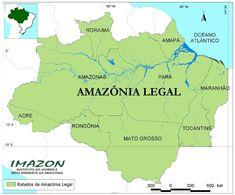 Região Amazônica - A Amazônia Legal é uma área que engloba nove estados brasileiros pertencentes à Bacia amazônica e a área de ocorrência das vegetações amazônicas.