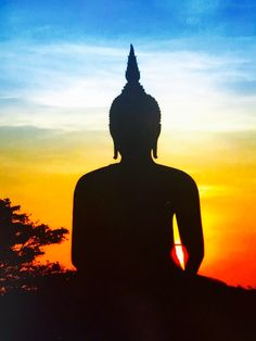 From pleasure comes grief From pleasure comes fear.  Whoever is free from pleasure  knows neither grief nor fear. ~ Gautama Buddha