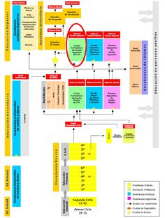 sistema educativo - chart that explains the education system in Spain My School Life, I School, School Stuff, Spanish Culture, Flipped Classroom, Classroom Ideas, Spanish 1, Prepositions, Education System