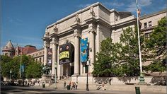 see the dinosaurs at the museum of natural history