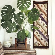 Got new stuff up in the shop and more is coming, including this lovely 1960s handwoven wall hanging!