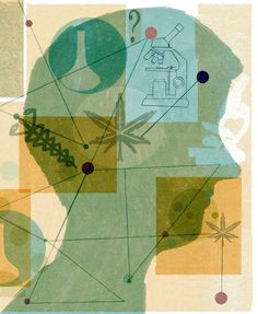 The curative side of #Cannabis   http://dld.bz/dJmzT via @washtimes #epielpsy #seizure #cbd #hempoil