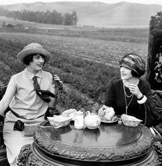 Tea in autumn