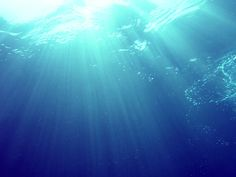 from the seabed