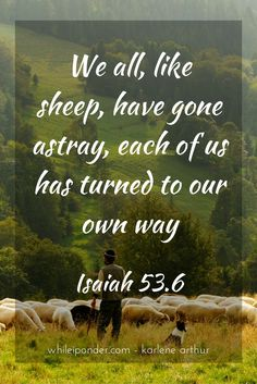 We all, like sheep, have gone astray, each of us has turned to our own way.  Isaiah 53.6