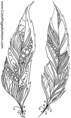 free feathers coloring pages - photo#11