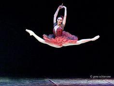Svetlana Zakharova (Russian: Светлана Захарова) (born June is a prima ballerina with both the Bolshoi Ballet and the La Scala Theatre Ballet. Ballet Du Bolchoï, Ballet Bolshoi, Ballet Dancers, Ballerinas, Royal Ballet, Svetlana Zakharova, Photography Winter, Ballet Photography, Dance Photos