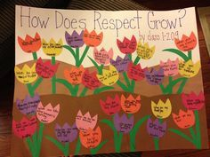 respect display boards - Google Search
