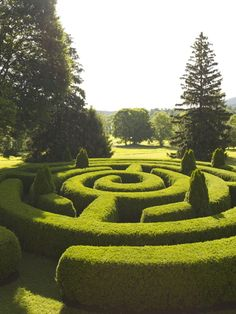 Maze Or Labyrinth In A Landscape