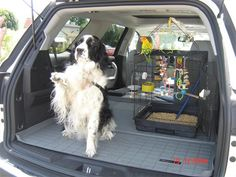 Vehicle: 2009 GMC Acadia / Acadia Denali As we travel from our Home in CA to work on our someday new Home in AZ. The baby bird, Sun Conure, Poncho along with our Bird Dog, Sadie, the English Springer goes along. Our new WeatherTech Cargo liner keeps the fur & feathers contained & eases the clean-up of the birdie poo-poo. It's Great!