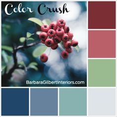 Color Crush: Winter Berries | Interior Design Dallas | Barbara Gilbert Interiors
