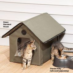 Outdoor Kitty House       Check this out>>>>>>>   http://amzn.to/1TSfdSq