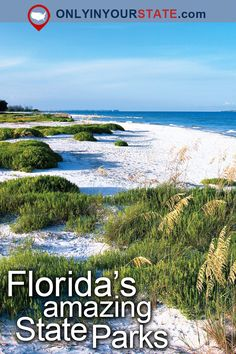 Travel   Florida   Attractions   USA   East Coast   State Parks   Places To Visit   Bucket List   Things To Do   Day Trips   Outdoor   Adventure   Road Trips   Weekend Getaway   Beautiful Places   Natural Wonders   Wildlife   Scenic Hikes   Trails   Hiking   Easy Hikes   Waterfront   Manatee   Bluffs   Vacations   Ocean   Caverns   Prairie   Alligators   Florida State Parks