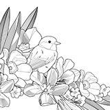 Illustration for custom letter by Alibeck Arinov