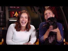 Marvel's AGENTS OF SHIELD Cast & Crew Celebrates 50 Episodes (2015) Clark Gregg Chloe Bennet ABC HD - YouTube
