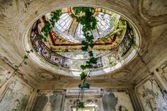 """beautyofabandonedplaces: """"Vines creeping in through an old skylight in the Verrière de chateau. [1600 x 1067] [OS]. """""""