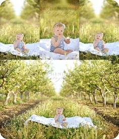 I would love to take pictures in an orchard