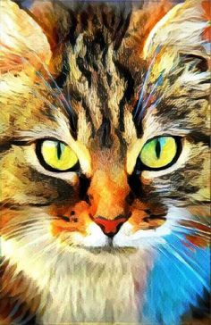 Cat Art kids room decor cat print pet lover gift cat wall