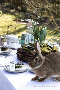Ostern gehört in den Garten I ostern, ostertisch, hase, easter I von HEIMATBAUM