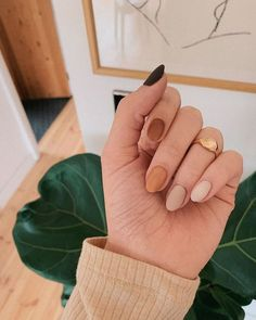 nails one color nails one color ; nails one color simple ; nails one color acrylic ; nails one color summer ; nails one color winter ; nails one color short ; nails one color gel ; nails one color matte Tan Nails, Fall Gel Nails, Summer Acrylic Nails, Cute Acrylic Nails, Gradient Nails, Summer Nails, Cute Fall Nails, Simple Fall Nails, Fall Manicure