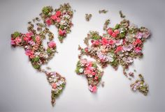 Christian Dior map flower