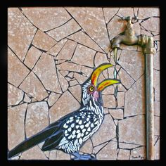 This little Southern African Yellow-billed Hornbill at a dripping tap went off to his new home today in Washington 🇺🇸 today! Mosaic Artwork, Mosaic Wall Art, Mosaic Glass, Glass Art, Stained Glass, Mosaic Animals, Mosaic Birds, Mosaic Crafts, Mosaic Projects
