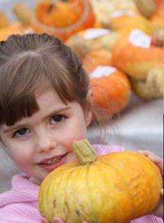 Autumn at Norton Priory & Gardens Watermelon, Gardens, Events, Autumn, Fruit, Fall Season, Outdoor Gardens, Fall, Garden