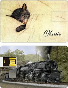 Chessie the Railroad kitten and her beloved Allegheny Steam Locomotive on a 2.2m USB wafer card! Great gift for any railroad lover!