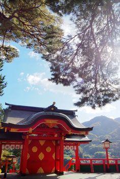 Osaka, Voyage Nepal, Cabin, House Styles, Home Decor, Santiago, Sunlight, Blue Skies, The Visitors