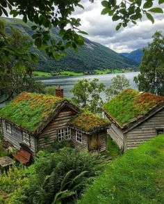Astruptunet / Norway (by Vibeke). (It's a beautiful world) The Places Youll Go, Places To See, Beautiful World, Beautiful Places, Beautiful Norway, Voyage Europe, Cabins In The Woods, Architecture, Beautiful Landscapes