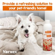 The Norwex Odour Eliminator is an enzyme-based, organic odor-remover that can be sprayed in the air, around or on the source of the odor. It removes the source of the odor, rather than simply masking it.