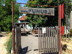Funus – Have a beer under the chestnut trees ( by Martin Jusko) Old Pub, Pubs And Restaurants, Bratislava, Beer, Outdoor Decor, Country, Root Beer, Ale, Rural Area