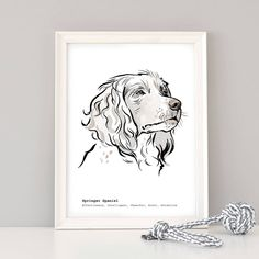 This portrait has a list of the breed traits below the image, or choose your own message to make a special present for a Spaniel owner. Watercolor Effects, Watercolor Texture, Watercolour, Springer Spaniel, Spaniel Dog, Spaniels, 30 Day Drawing Challenge, Dog Portraits, Portrait Art