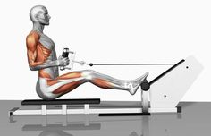 How to Work Your Back and Arms with the Cable Row