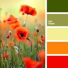 Scroll down too to see more beautiful color pallets. A pleasant bright orange fatigue that you do not want to let go. The olive line of stems seems to support the old gold of a tired day. And the main thing f. Orange Color Palettes, Colour Pallette, Colour Schemes, Color Combos, Color Palette Green, Orange Palette, Paint Schemes, Color Balance, Design Seeds