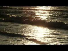 Joe Dassin - L'Été Indien (+playlist)