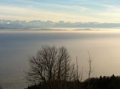 View point up to the Swiss Alps on a foggy day from sunny Weissenstein, Solothurn, Switzerland
