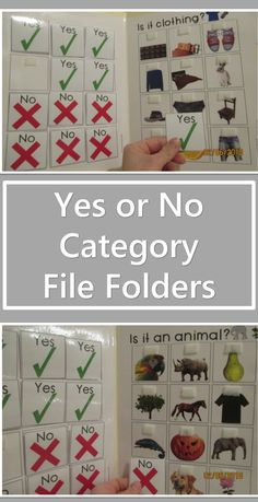Yes or no question file folders for Autism and Special Education. Focuses on teaching Categories with Errorless learning and yes or no questions.