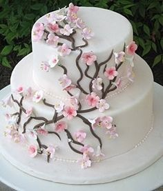 I want to take a cake decorating class so I can make cherry blossom cakes and cupcakes yvettez