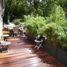 Schöner Dachgarten München mit Holzterrasse und Gartenmöbeln Patio, Outdoor Decor, Plants, Home Decor, Homemade Home Decor, Yard, Porch, Terrace, Plant