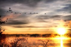This shot is of Lake Hartwell, Clemson, SC at sunrise. Sunrise courtesy of God, geese on loan from Canada.