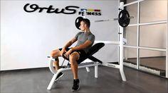 Banco-multiposición-ortus-fitness