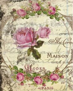 Maison Rose 8 X 10 French Canvas Print