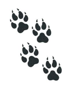 Tattoo ideas wolf paw ideas - Famous Last Words Wolf Tattoo Design, Wolf Print Tattoo, Wolf Paw Print, Wolf Tattoos, Body Art Tattoos, Tribal Tattoos, Tribal Wolf Tattoo, Tatoos, Bear Paw Tattoos